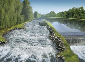 Fischweg